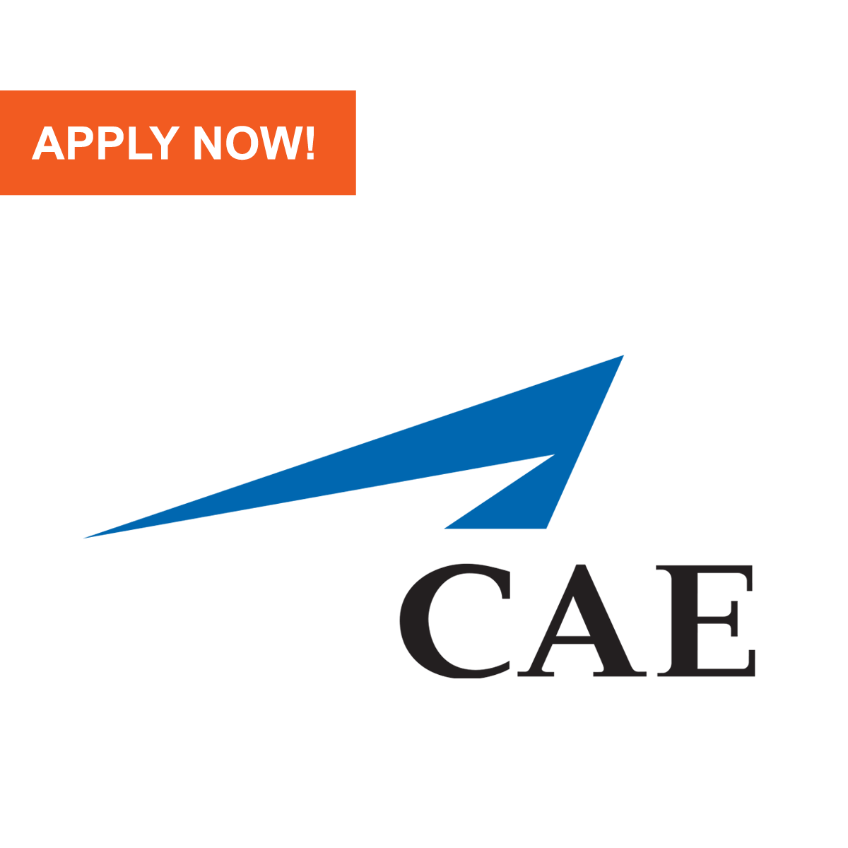 aviation jobs pilot tech u0026 cabin crew cae parc aviation